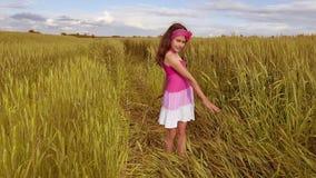 Ragazza felice su un giacimento di grano alla luce solare modificato bambino della ragazza lungo il video di movimento lento rura stock footage