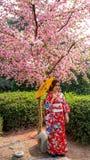 Ragazza giapponese Fotografie Stock Libere da Diritti