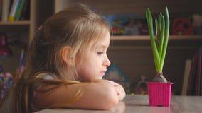 Ragazza graziosa che esamina pianta in vaso con l'espressione premurosa La gente, facente il giardinaggio, fiore piantante concet stock footage