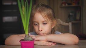 Ragazza graziosa che esamina pianta in vaso con l'espressione premurosa La gente, facente il giardinaggio, fiore piantante concet archivi video