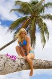 Ragazza graziosa su un palmtree Immagine Stock Libera da Diritti