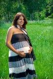 Ragazza incinta sulla natura Immagine Stock