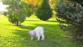 Ragazza infantile in parco stock footage