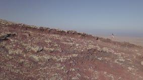 Ragazza insieme al suo cane sulla cima del vulcano stock footage