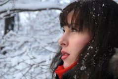 Ragazza in inverno Fotografie Stock