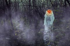 Ragazza morta con la Jack-o-lanterna in una foresta nebbiosa alla notte fotografie stock libere da diritti