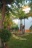 Ragazza nel giardino immagini stock libere da diritti