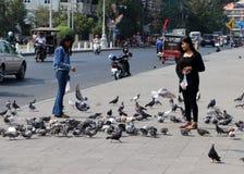 Ragazza nel nero coprire i piccioni d'alimentazione accanto alla strada fotografia stock libera da diritti