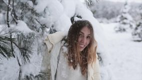 Ragazza nell'inverno Forest Snowy stock footage