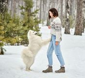 Ragazza nella foresta di inverno che cammina con un cane La neve sta cadendo fotografia stock