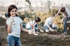 Ragazza positiva contentissima che fora un giovane albero Immagine Stock Libera da Diritti