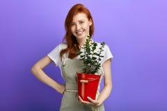 Ragazza positiva in grembiule grigio e maglietta bianca con il fiore che esamina la macchina fotografica immagini stock libere da diritti