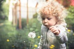 Ragazza riccia sveglia del bambino che assomiglia al dente di leone di salto del dente di leone nel parco di estate Fotografia Stock