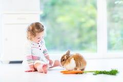 Ragazza riccia sveglia del bambino che gioca con un coniglietto reale Fotografie Stock