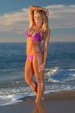 Ragazza sexy del bikini immagine stock libera da diritti