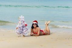 Ragazza sexy Santa in bikini su un abete della spiaggia immagini stock