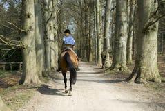 Ragazza su un cavallo Fotografie Stock