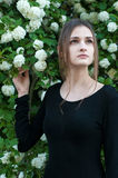 Ragazza su un fondo del viburno bianco di fioritura Fotografia Stock