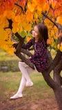 Ragazza sui sogni di un albero di autunno immagine stock