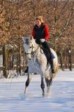 Ragazza sul cavallo di dressage in inverno fotografie stock