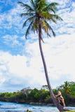 Ragazza sulla palma Fotografia Stock