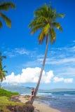 Ragazza sulla palma Fotografie Stock Libere da Diritti