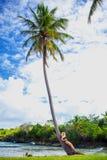 Ragazza sulla palma Immagini Stock