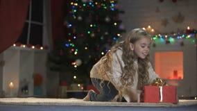 Ragazza sveglia che striscia al regalo di Natale atteso da tempo, regalo da Santa, vigilia magica stock footage