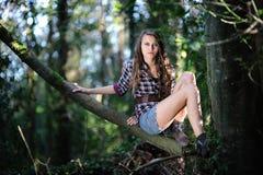 Ragazza in un albero Immagine Stock