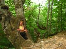 Ragazza in un albero vuoto nel legno immagine stock libera da diritti