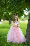 Ragazza in un bello vestito Fotografia Stock