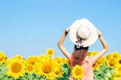Ragazza in un cappello in un campo dei girasoli di estate La vista dalla parte posteriore Paesaggio floreale Fotografia Stock