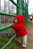 Ragazza in un giardino zoologico vicino ad una cella Fotografie Stock