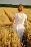 Ragazza in vestito bianco nel giacimento di grano Fotografie Stock