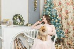Ragazza in vestito con il piccolo cane all'albero di Natale fotografia stock libera da diritti