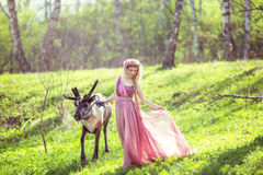 Ragazza in vestito leggiadramente con un treno scorrente del vestito che cammina con una renna Fotografie Stock Libere da Diritti