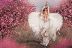 Ragazza in vestito rosa in giardini di fioritura fotografie stock libere da diritti