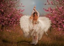 Ragazza in vestito rosa in giardini di fioritura immagini stock libere da diritti