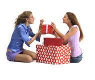 Ragazze attraenti con i contenitori di regalo Immagine Stock Libera da Diritti