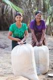 Ragazze birmane con la pasta di thanaka sui loro fronti Fotografia Stock
