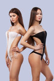 Ragazze castane sexy che indossano swimwear che posa sul fondo di colore Ente perfetto Concetto della pubblicità di estate del bi Fotografia Stock Libera da Diritti