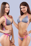 Ragazze castane sexy che indossano swimwear che posa sul fondo di colore Ente perfetto Concetto della pubblicità di estate del bi Immagini Stock Libere da Diritti