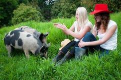 Ragazze del paese con i maiali Fotografia Stock Libera da Diritti