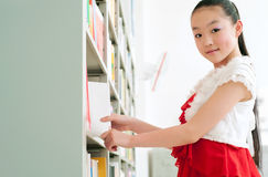Ragazze graziose che studiano nella libreria Immagine Stock Libera da Diritti
