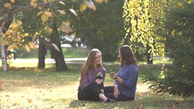 Ragazze in parco stock footage