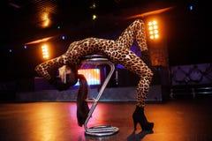 Ragazze sexy in club Fotografia Stock