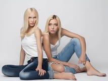 Ragazze sexy delle coppie dei gemelli fotografia stock libera da diritti
