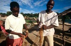 Ragazzi che preparano una rete da pesca, Uganda Fotografia Stock