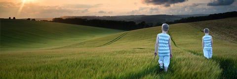 Ragazzi del paesaggio di concetto giovani che camminano attraverso il campo al tramonto dentro Fotografie Stock