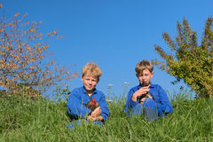 Ragazzi dell'azienda agricola con i polli Fotografia Stock Libera da Diritti